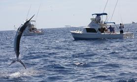 Fishing ixtapa
