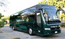Estrella de oro buses ixtapa